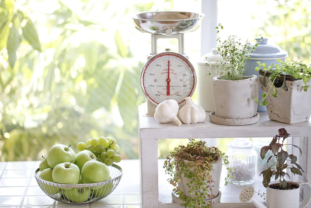 Orti aromatici in cucina - Faber