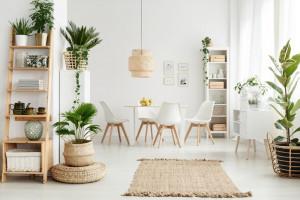 Come purificare l'aria di casa - Faber